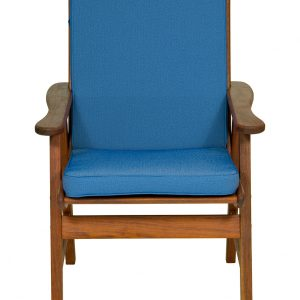 Cobalt Low Back Cushion