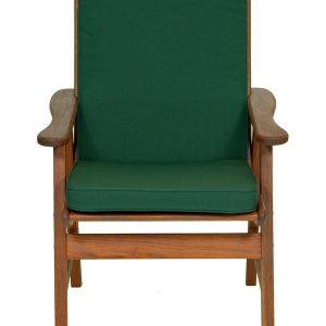 Jalapeno Low Back Cushion