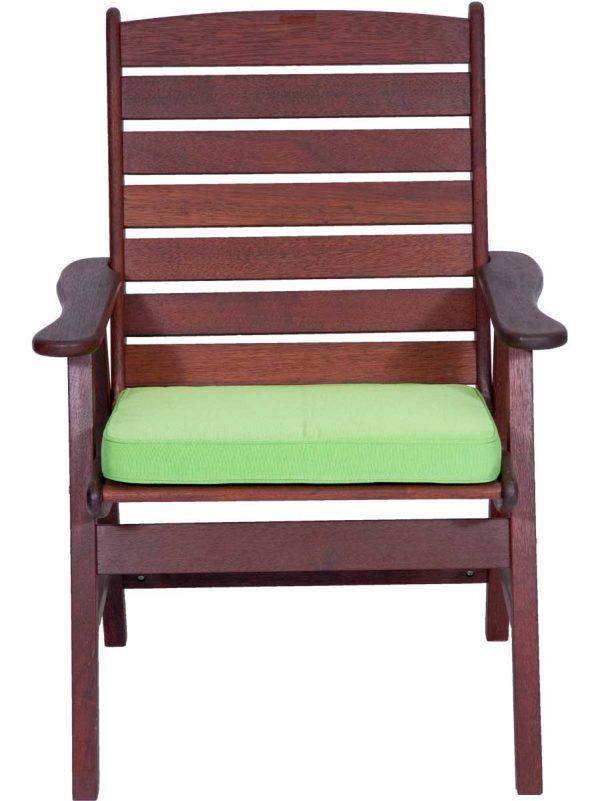 Granny Smith Seat Pad Chair Cushion