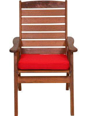 Strawberry Seat Pad Chair Cushion